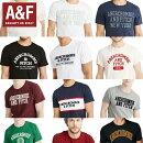 アバクロ正規メンズAbercrombie&Fitch123-238アバクロンビーアンドフィッチ3色半袖TEEシャツ