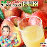 青森 りんごジュース 100% ストレート果汁 160万本突破 1000ml×15本メガセット【林檎園 K-15】 年間16万本完売★ リンゴ ジュース 葉とらずりんご 使用 リンゴジュース 紙パック ストレート りんご