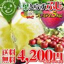 <出荷開始!>本当に美味しい葉とらずりんご★葉摘みをしないこだわり栽培 りんごに残る黄色い...