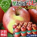 ≪グルメ大賞受賞≫リアルタイムランキング1位★本当に美味しい葉とらずりんご!一番人気品種ふ...