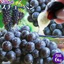 甘〜い果汁を種ごと丸ごとゴックン♪日本一の産地から濃紫ぶどうスチューベン!!≪送料無料≫【...