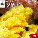 〈送料無料〉種子島産 【安納芋 2kg】(大・中・小混合サイズ6?10本) 蜜芋 [※他商品との同梱不可][※常温便]