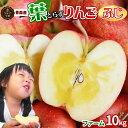 《送料無料》りんごの常識を変える★葉とらずりんご 本場青森ゴールド農園【葉とらず…