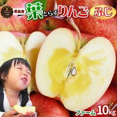 《送料無料》りんごの常識を変える★葉とらずりんご 本場青森ゴールド農園【葉とらずふじ5kg フ…