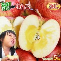 青森りんご葉とらずふじ贈答用5kg