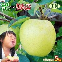 青森りんご葉とらず栽培王林贈答用5kg