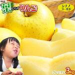 青森りんご【シナノゴールド3kgプレミアム】<送料無料>[※常温便][※産地直送のため同梱不可]
