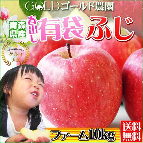2015グルメ大賞 《送料無料》(14-23玉×2段) 青森 りんご [※ゴールド農園...