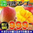 宮崎マンゴー初体験の方も!ホンモノの美味しさをお確かめ下さい超目玉999円 スーパーセール限...