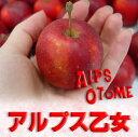 なにこれ〜!?可愛いミニりんご、アルプス乙女♪クリスマス&お正月のお飾りに、食べても意外...