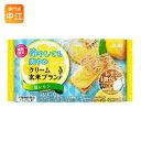 アサヒグループ食品 バランスアップ クリーム玄米ブラン 塩レモン 48個入