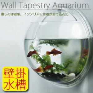 ★【送料無料】《Mサイズ》水槽を壁に掛けるという新発想! 壁掛け半球状円球インテリア水槽 壁掛…