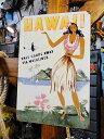 ハワイのU.S.ヘヴィースチールサイン(フラガール) ■ アメリカ看板...