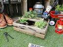 ガーデンウッドボックス ■ アメリカ雑貨 アメリカン雑貨 アメリカ 雑貨 インテリア 小物