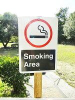 アメリカの本物のトラフィックサイン(喫煙可能エリア)★看板
