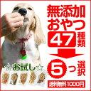 無添加犬用おやつを36種類の中から5袋も選択可能の犬用おやつお試しセットです! 犬 おやつ/無...