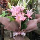 花束 プレゼント ピンクユリ・バラ・ガーベラの華やか花束 Mサイズ 長寿祝い歓迎会 退職祝い 誕生日ギフト