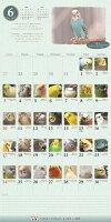 【先行販売】2018年版365days鳥どりカレンダー