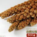 赤粟の穂 500g