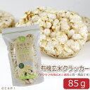 賞味期限:2020/9/30【尾田川農園】有機玄米クラッカー 85g