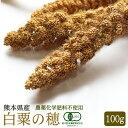 【熊本県産】有機JAS認定品 白粟の穂 100g 2019年産 ※緑ラベル※
