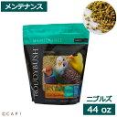 【楽天スーパーSALE】賞味期限2022/12/11ラウディブッシュ デイリーメンテナンス ニブルズ 44oz(1.25kg)