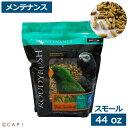 賞味期限2023/5/6ラウディブッシュ デイリーメンテナンス スモール44oz(1.25kg)