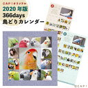 【2020年版】366days 鳥どりカレンダー