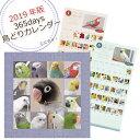 【2019年版】365days 鳥どりカレンダー...