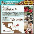 【5月グルメコーヒー】キューバクリスタルマウンテン200g袋入り(豆or粉)
