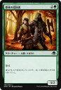 カードミュージアム 楽天市場店で買える「マジック:ザ・ギャザリング 森林の巡回者 異界月 EMN   ギャザ MTG マジック・ザ・ギャザリング 日本語版 クリーチャー 緑 イニストラードを覆う影ブロック」の画像です。価格は20円になります。