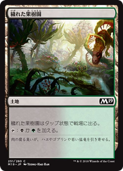 MTG マジック:ザ・ギャザリング 穢れた果樹園 コモン 基本セット2019 M19 MAGIC The Gathering | ギャザ MTG マジック・ザ・ギャザリング 日本語版 土地 土地