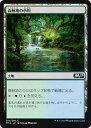 カードミュージアム 楽天市場店で買える「MTG マジック:ザ・ギャザリング 森林地の小川 コモン 基本セット2019 M19 MAGIC The Gathering   ギャザ MTG マジック・ザ・ギャザリング 日本語版 土地 土地」の画像です。価格は30円になります。