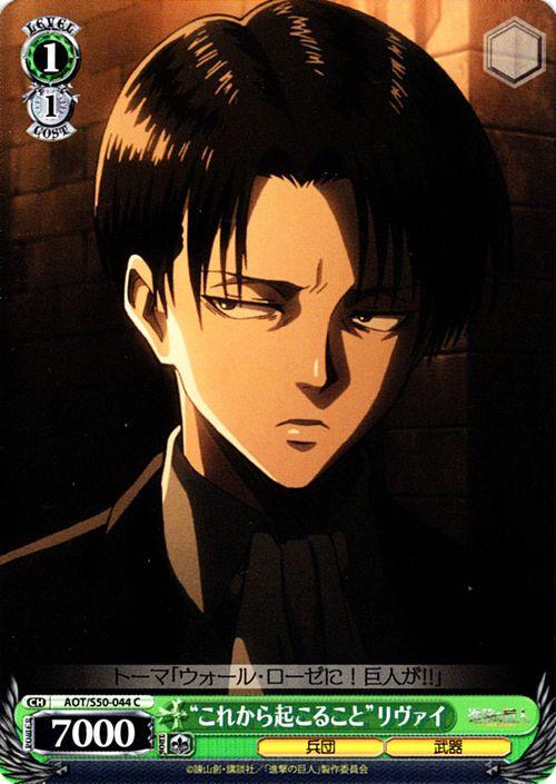 トレーディングカード・テレカ, トレーディングカードゲーム  Vol.2 ( C ) AOTS50-044