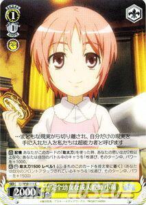 トレーディングカード・テレカ, トレーディングカードゲーム  ( C ) IDW10-018