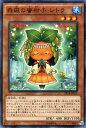カードミュージアム 楽天市場店で買える「遊戯王カード 森羅の蜜柑子 シトラ エクストラ パック ナイツ・オブ・オーダー EP14 YuGiOh! | 遊戯王 カード 森羅の蜜柑子シトラ 森羅 水属性 植物族」の画像です。価格は20円になります。
