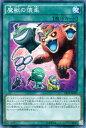 遊戯王カード 魔獣の懐柔 スーパーレア エクストラ パック ナイツ・オブ・オーダー EP14 YuGiOh! | 遊戯王 カード スーパー レア 通常魔法