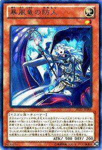 トレーディングカード・テレカ, トレーディングカードゲーム  SD25 YuGiOh!