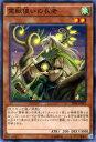 カードミュージアム 楽天市場店で買える「遊戯王カード 霊獣使いの長老 ブースター SP トライブ・フォース SPTR YuGiOh! | 遊戯王 カード 霊獣使い 風属性 サイキック族」の画像です。価格は40円になります。