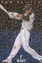 カルビー2009 プロ野球チップス トッププレーヤーカード No.TP-06 稲葉篤紀