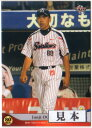 BBM2014 ヤクルトスワローズ レギュラーカード 100円カード(No.1-No.41)