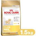 100421_canin_20_5