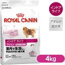 150716_royalcanin_10