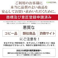 CARESTAR防水シートカバーシングル13