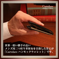 二つ折り財布/小銭入れ/スリム/小型/財布/小ささと薄さと収納力を実現できたのは、これまでにない特別な構造