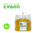 「えがおの力(旧松の力)」4L 植物油由来成分からできた濃縮自然派洗剤 1