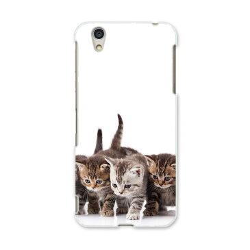 AQUOS L UQ mobile AQUOSL simfree SIMフリー スマホ カバー 全機種対応 あり スマホケース ハード pc ケース ハードケース 写真 動物 猫 ねこ アニマル 写真・風景 005928