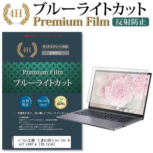 PCアクセサリー, 液晶保護フィルム  10.1 9H