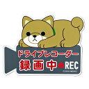 虹八-Kohya-で買える「豆しば ワンコ物語 ドライブレコーダー 録画中 マグネット ME123」の画像です。価格は798円になります。