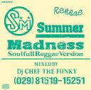 DJ CHEF THE FUNKY / SUMMER MADNESS -Soulfull Reggae Version-